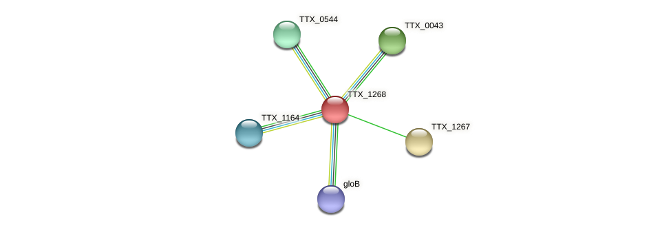 TTX_1268 protein (Thermoproteus tenax) - STRING interaction network