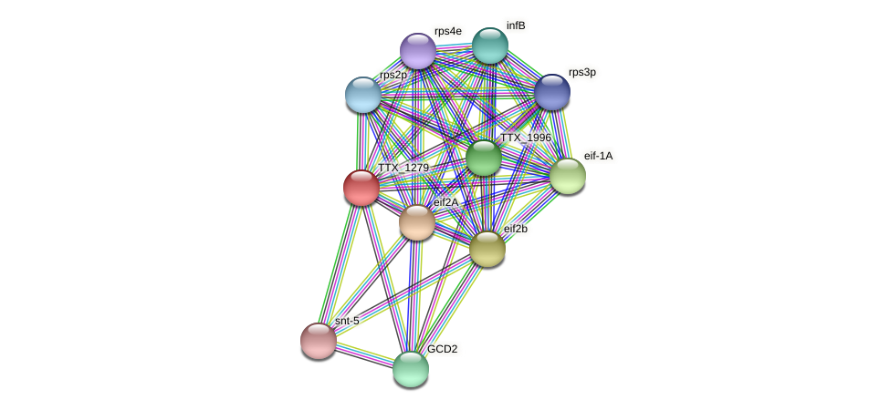 TTX_1279 protein (Thermoproteus tenax) - STRING interaction network