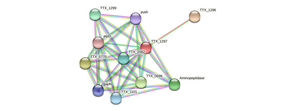 TTX_1297 protein (Thermoproteus tenax) - STRING interaction network