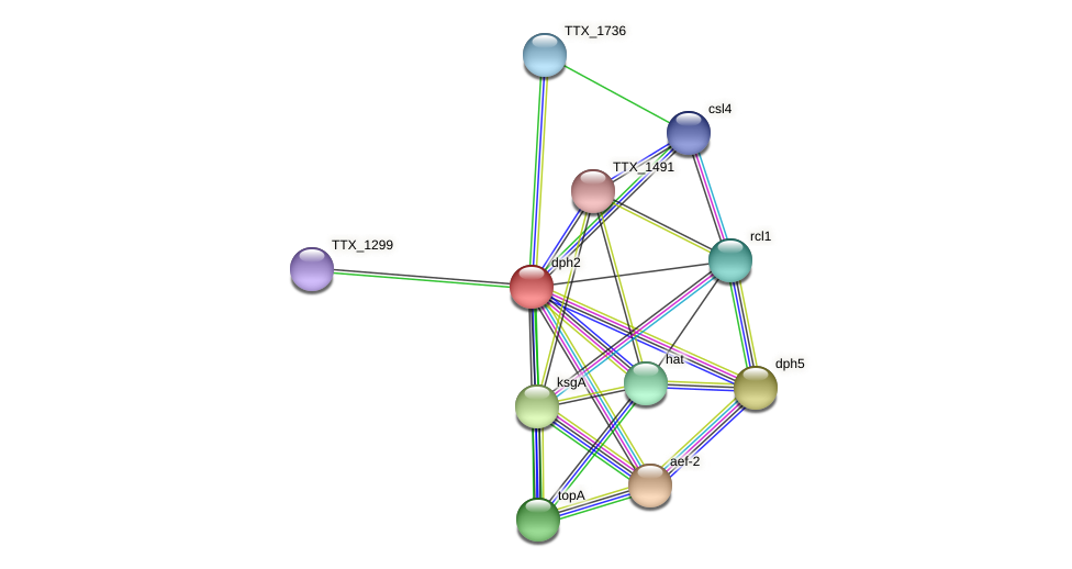 dph2 protein (Thermoproteus tenax) - STRING interaction network
