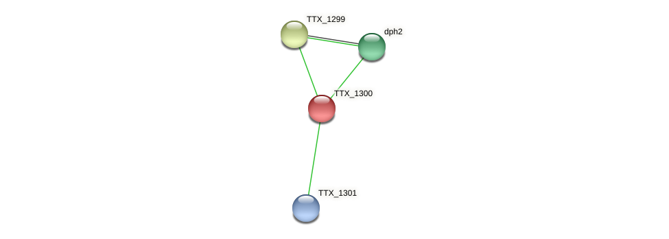 TTX_1300 protein (Thermoproteus tenax) - STRING interaction network