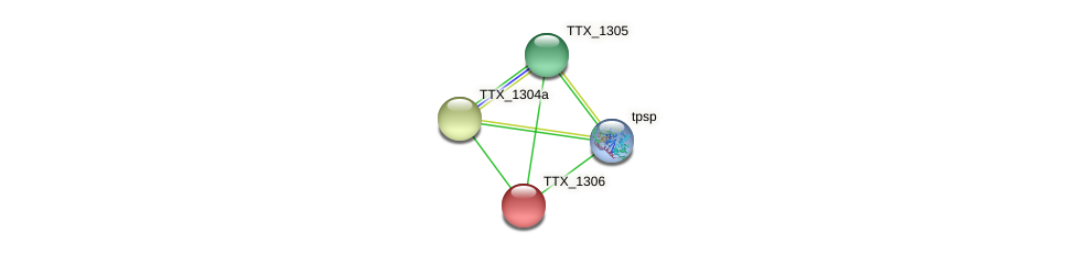 TTX_1306 protein (Thermoproteus tenax) - STRING interaction network