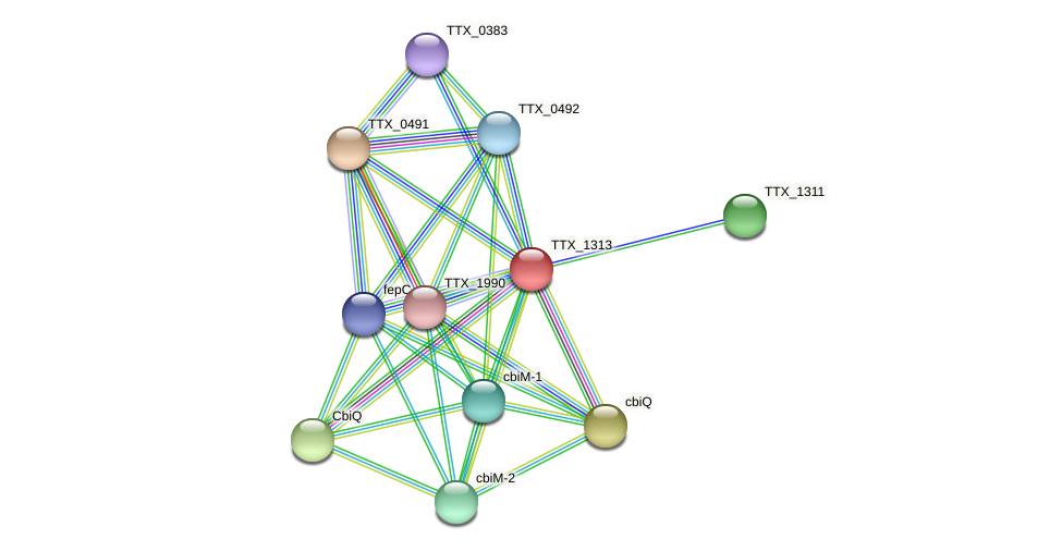 TTX_1313 protein (Thermoproteus tenax) - STRING interaction network