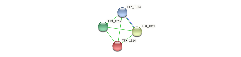 TTX_1314 protein (Thermoproteus tenax) - STRING interaction network