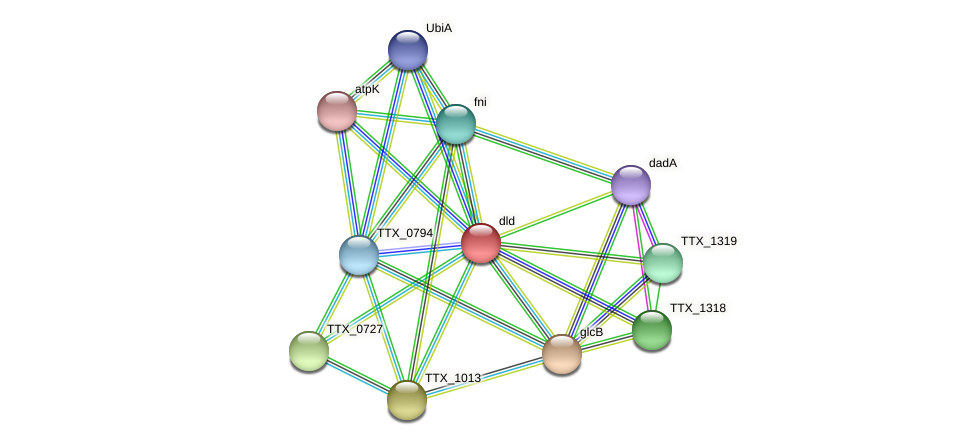 dld protein (Thermoproteus tenax) - STRING interaction network