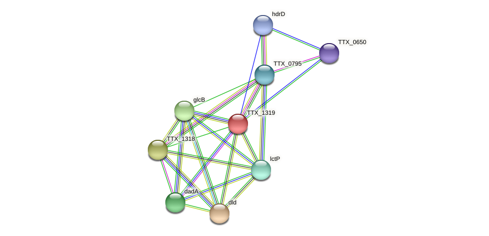 TTX_1319 protein (Thermoproteus tenax) - STRING interaction network