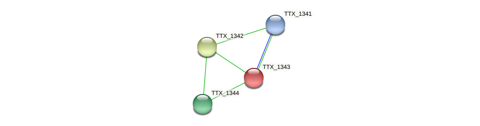 TTX_1343 protein (Thermoproteus tenax) - STRING interaction network