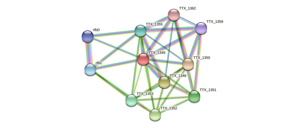 TTX_1349 protein (Thermoproteus tenax) - STRING interaction network