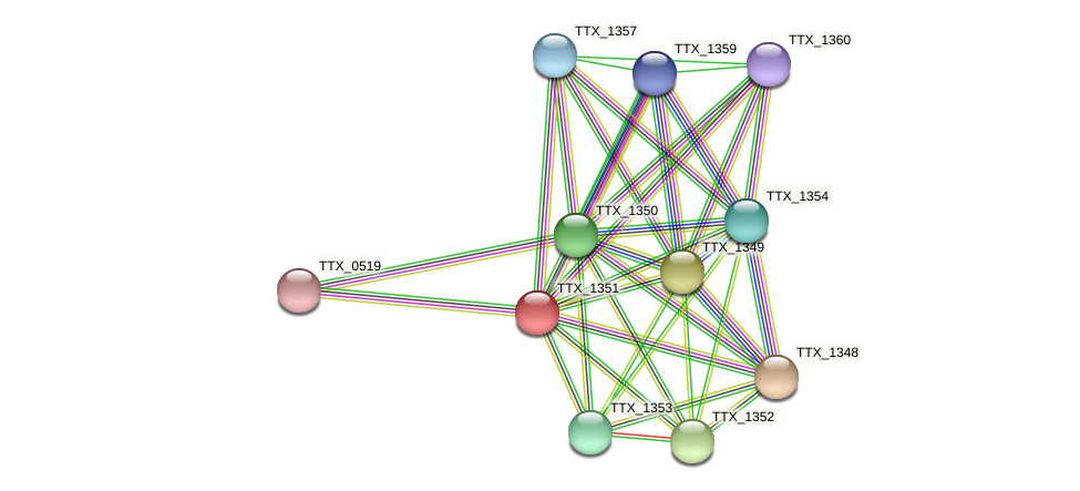 TTX_1351 protein (Thermoproteus tenax) - STRING interaction network