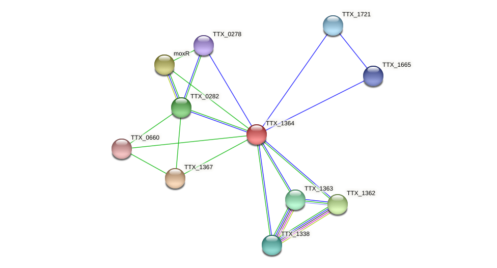 TTX_1364 protein (Thermoproteus tenax) - STRING interaction network