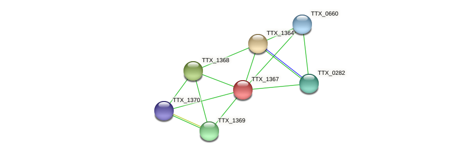 TTX_1367 protein (Thermoproteus tenax) - STRING interaction network