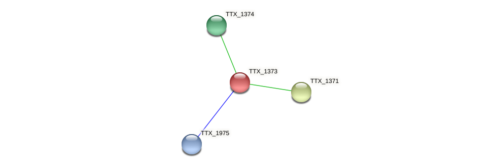 TTX_1373 protein (Thermoproteus tenax) - STRING interaction network