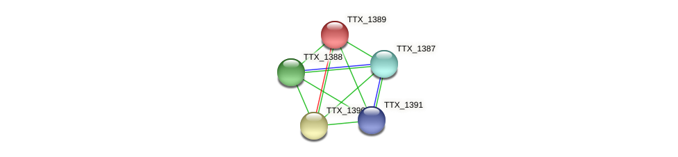 TTX_1389 protein (Thermoproteus tenax) - STRING interaction network