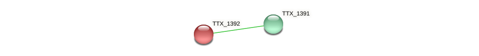 TTX_1392 protein (Thermoproteus tenax) - STRING interaction network