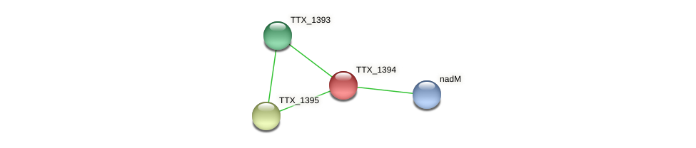 TTX_1394 protein (Thermoproteus tenax) - STRING interaction network