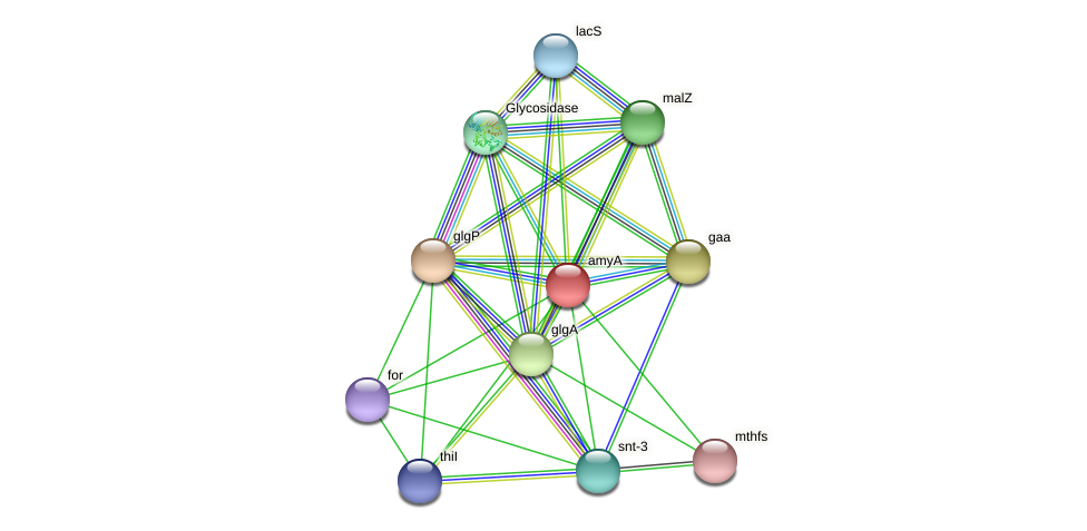 TTX_1399 protein (Thermoproteus tenax) - STRING interaction network
