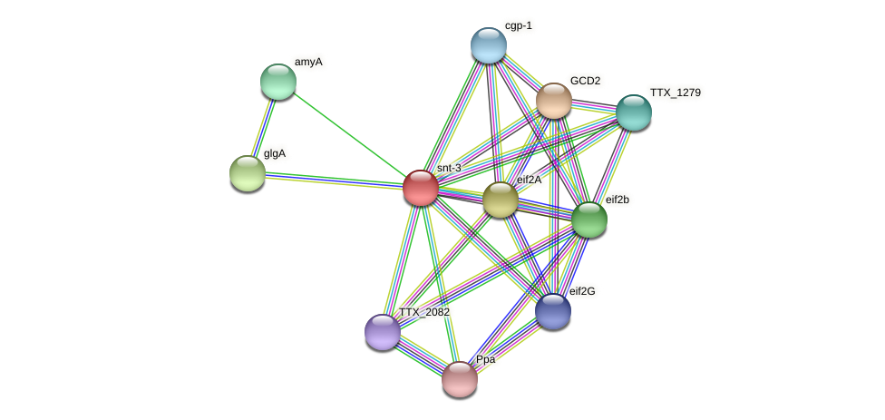 snt-3 protein (Thermoproteus tenax) - STRING interaction network