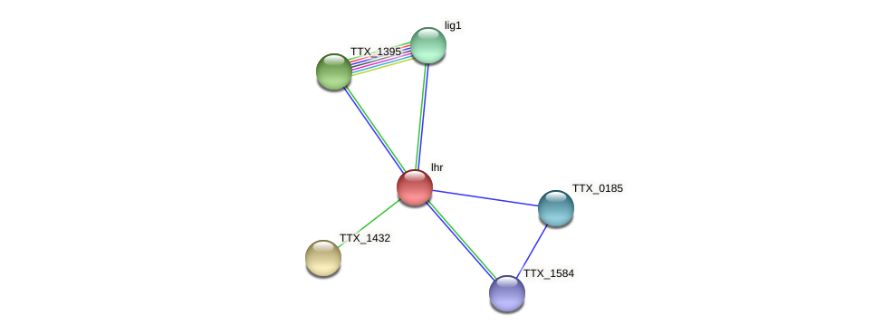lhr protein (Thermoproteus tenax) - STRING interaction network
