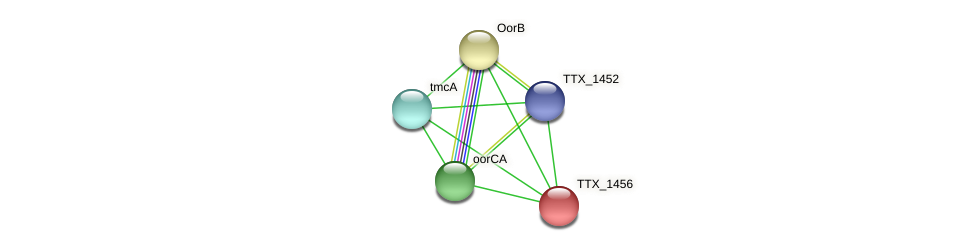 TTX_1456 protein (Thermoproteus tenax) - STRING interaction network