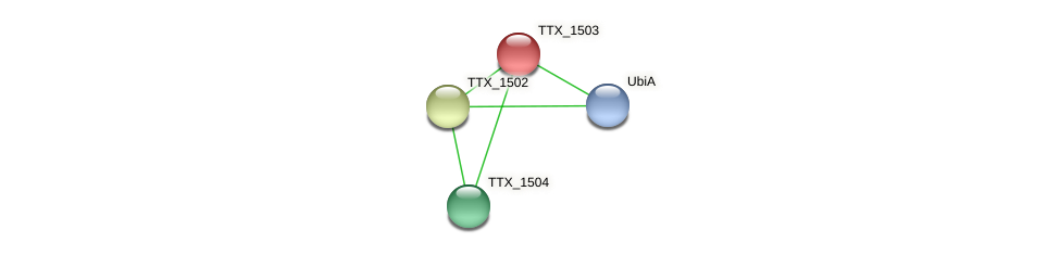 TTX_1503 protein (Thermoproteus tenax) - STRING interaction network