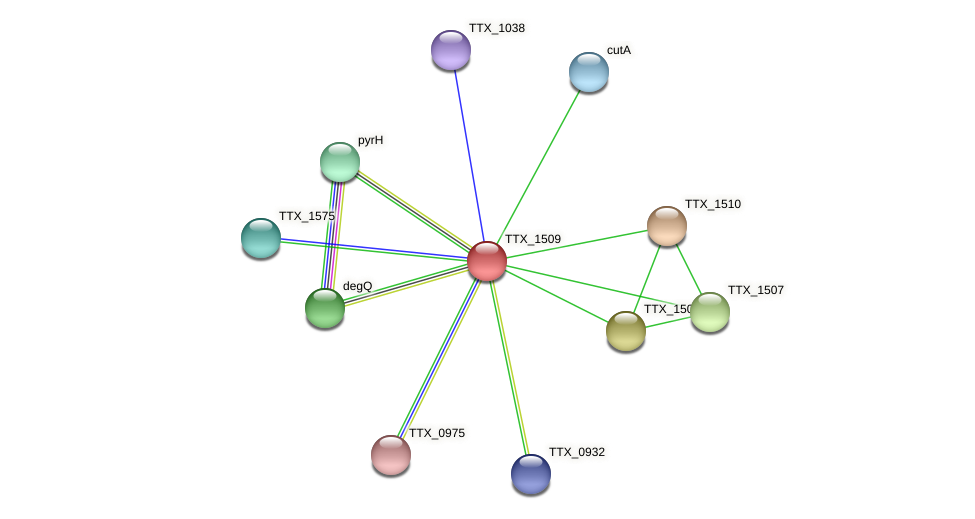 TTX_1509 protein (Thermoproteus tenax) - STRING interaction network