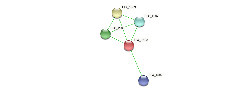 TTX_1510 protein (Thermoproteus tenax) - STRING interaction network