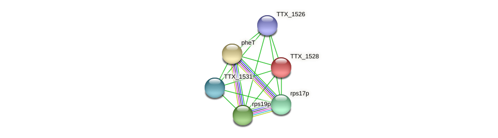 TTX_1528 protein (Thermoproteus tenax) - STRING interaction network