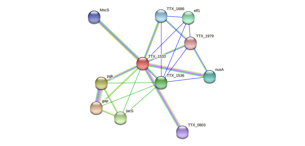 TTX_1533 protein (Thermoproteus tenax) - STRING interaction network