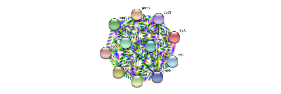 thrS protein (Thermoproteus tenax) - STRING interaction network
