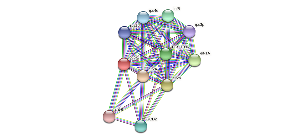 cgp-1 protein (Thermoproteus tenax) - STRING interaction network