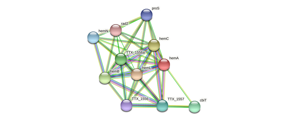 hemA protein (Thermoproteus tenax) - STRING interaction network