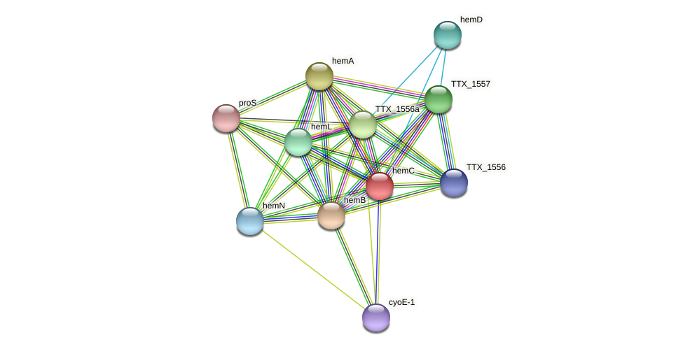 hemC protein (Thermoproteus tenax) - STRING interaction network