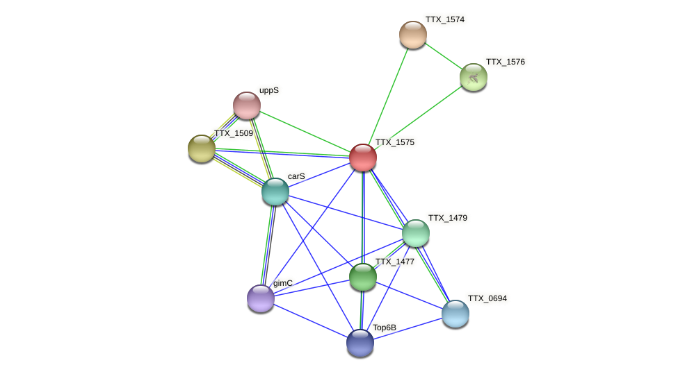 TTX_1575 protein (Thermoproteus tenax) - STRING interaction network