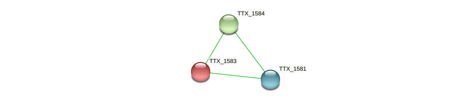 TTX_1583 protein (Thermoproteus tenax) - STRING interaction network