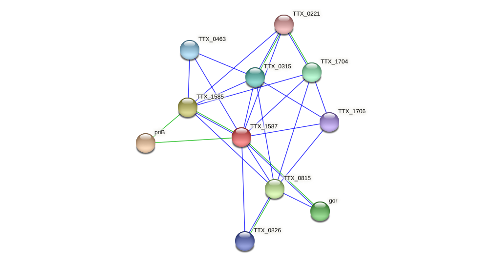 TTX_1587 protein (Thermoproteus tenax) - STRING interaction network