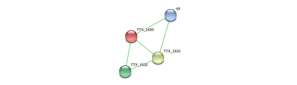 TTX_1630 protein (Thermoproteus tenax) - STRING interaction network