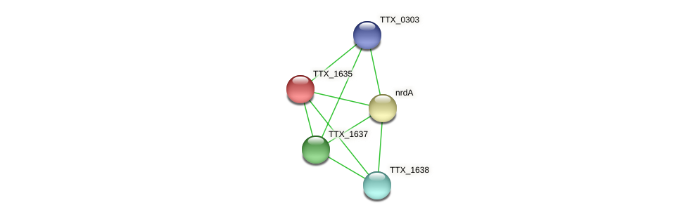 TTX_1635 protein (Thermoproteus tenax) - STRING interaction network