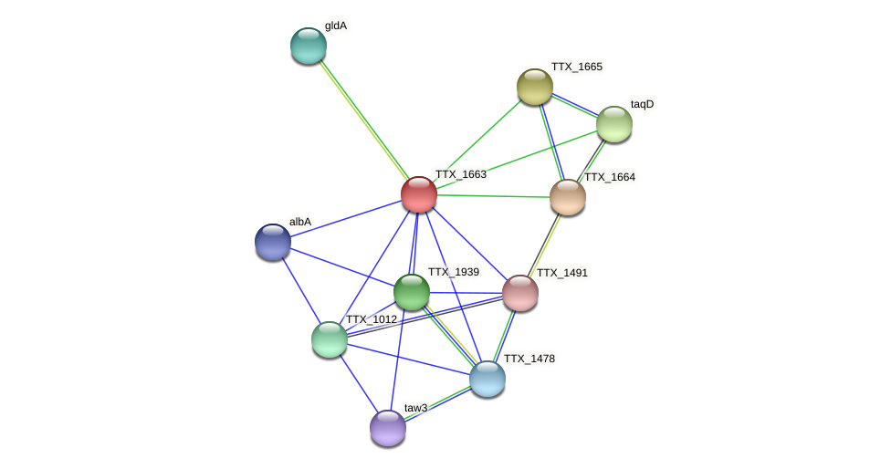 TTX_1663 protein (Thermoproteus tenax) - STRING interaction network