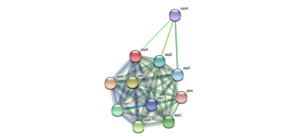 atpA protein (Thermoproteus tenax) - STRING interaction network