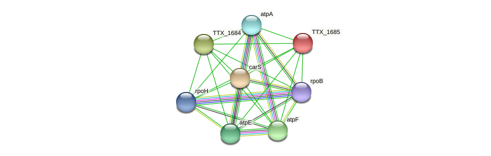 TTX_1685 protein (Thermoproteus tenax) - STRING interaction network