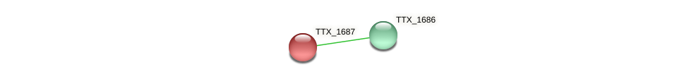 TTX_1687 protein (Thermoproteus tenax) - STRING interaction network