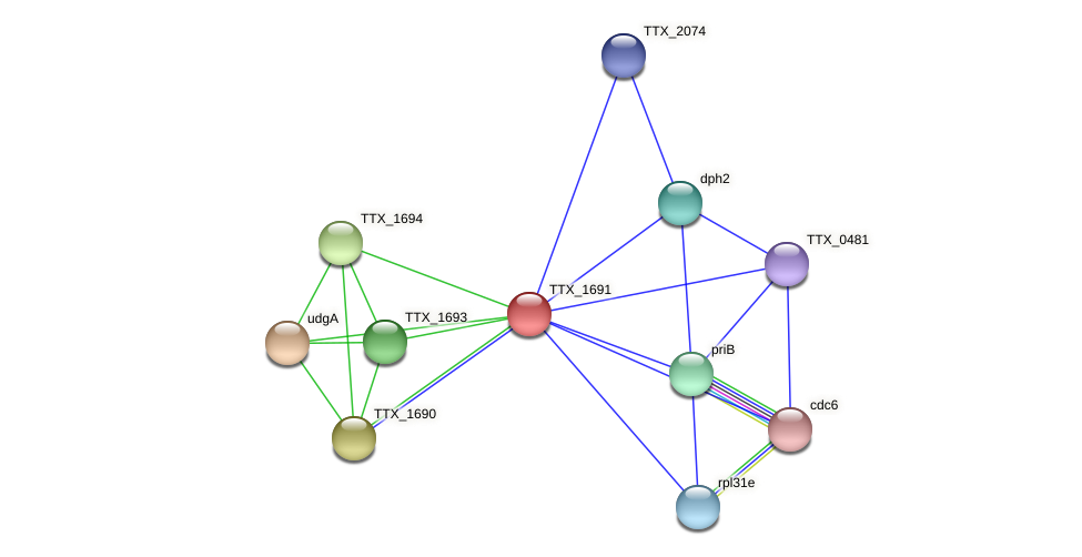 TTX_1691 protein (Thermoproteus tenax) - STRING interaction network