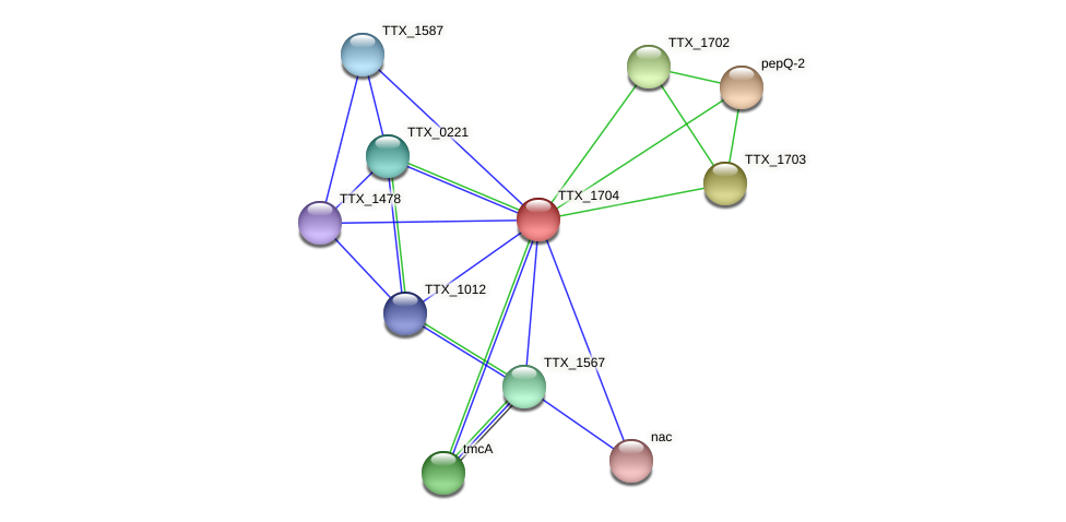TTX_1704 protein (Thermoproteus tenax) - STRING interaction network