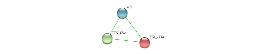 TTX_1713 protein (Thermoproteus tenax) - STRING interaction network