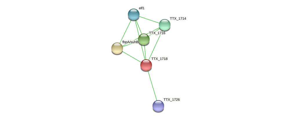 TTX_1718 protein (Thermoproteus tenax) - STRING interaction network