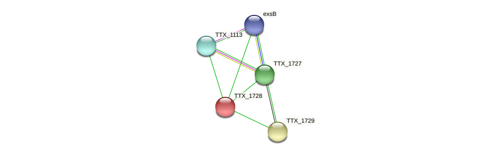TTX_1728 protein (Thermoproteus tenax) - STRING interaction network