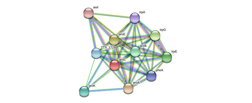 aroC protein (Thermoproteus tenax) - STRING interaction network