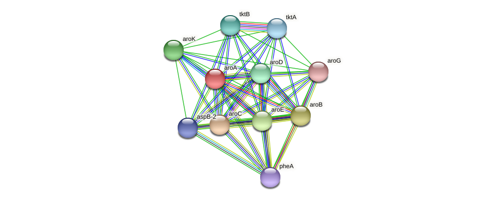 aroA protein (Thermoproteus tenax) - STRING interaction network