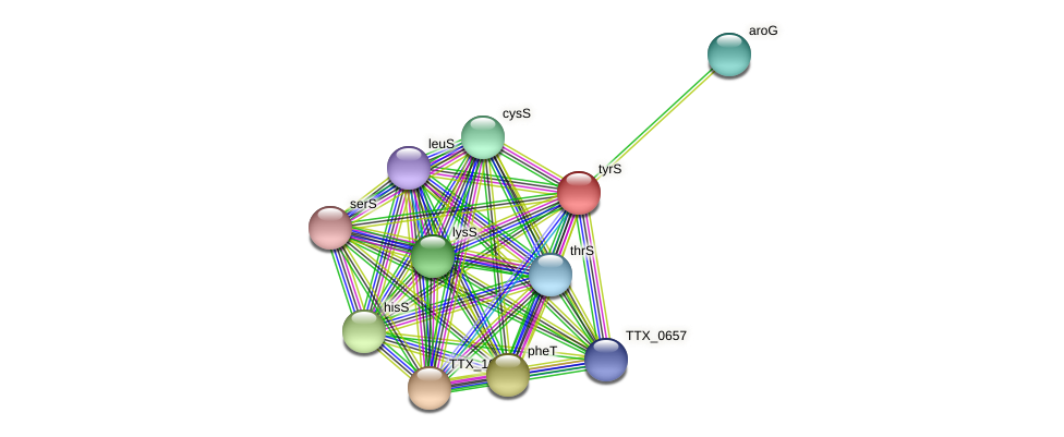 TTX_1755 protein (Thermoproteus tenax) - STRING interaction network