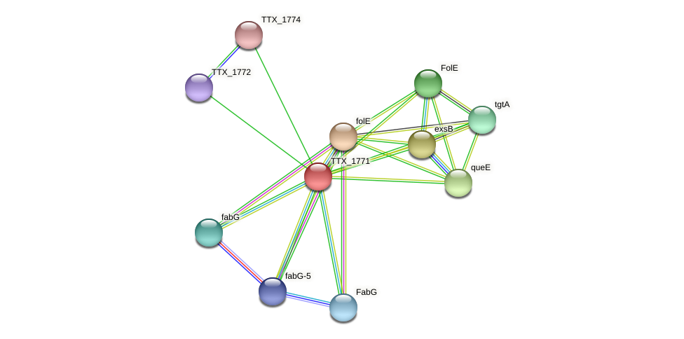TTX_1771 protein (Thermoproteus tenax) - STRING interaction network